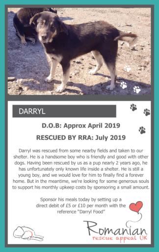 Darryl Food Sponsor Card