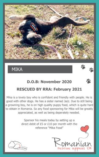 Mika Food Sponsor Card