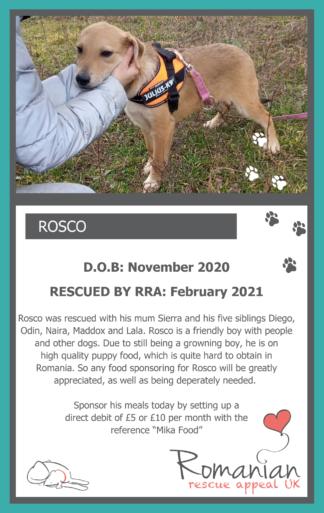 Rosco Food Sponsor Card