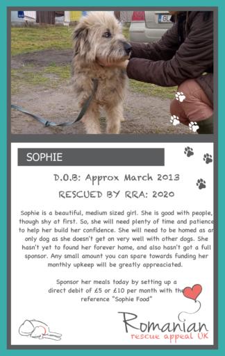 Sophie Food Sponsor Card
